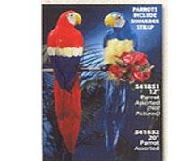 """Parrot 12"""""""