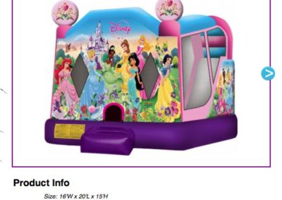 Combo - Disney Princess $179