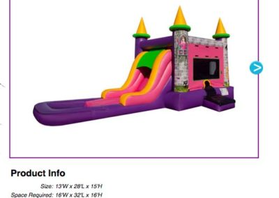 EZ Princess Combo Waterslide $195